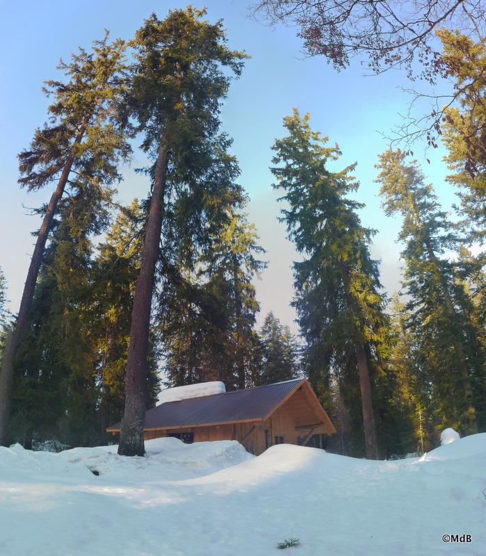 Randonnée à skis dans le Risoux